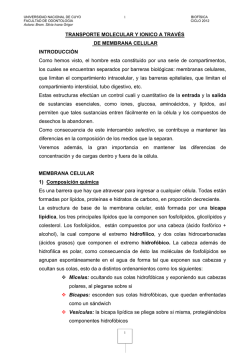 CICLO 2015. Documento de estudio Transporte a traves de