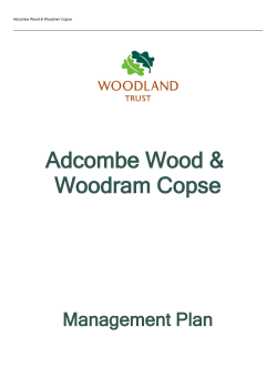 Management Plan - The Woodland Trust