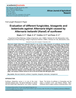 Evaluation of different fungicides, bioagents and botanicals against