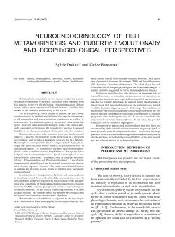 neuroendocrinology of fish metamorphosis and puberty