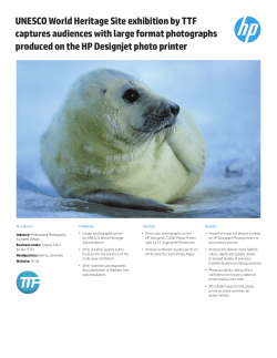 HP Designjet Z3200 Photo Printer | IT case study