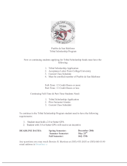 Pueblo de San Ildefonso Tribal Scholarship Program