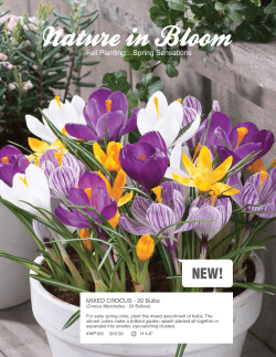 Nature In Bloom - Western Promotions, Inc.