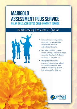 Assessment Plus Service Marigold - Open Objects