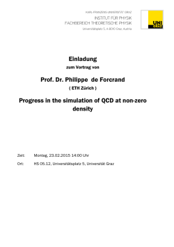 Einladung Prof. Dr. Philippe de Forcrand Progress in the simulation