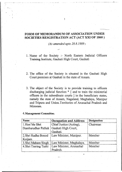 Memorandum of Association of NEJOTI