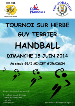 fiche inscription tournoi guy terrier 15 juin 2014