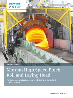 Morgan High Speed Pinch Roll and Laying Head