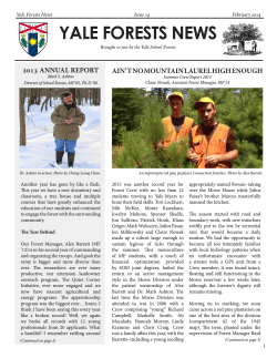 Our Spring 2014 annual update on the forest