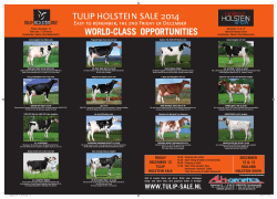 Click her to see a selection of animals selling in the Tulip Sale 2014