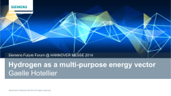Hydrogen as a multi-purpose energy vector