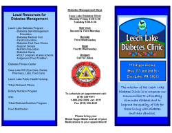 Leech Lake Diabetes Clinic Brochure