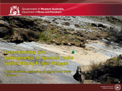Geochemistry and petrogenisis of Albany