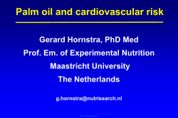 Palm oil and cardiovascular risk