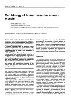 Cell biology of human vascular smooth muscle