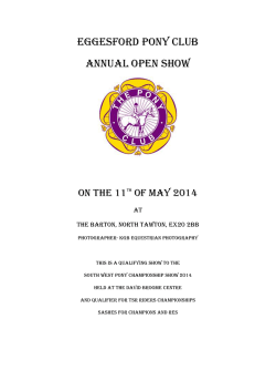 Eggesford Pony Club Annual Open Show
