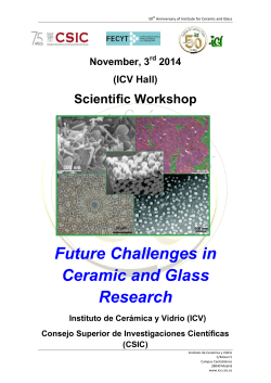 Future Challenges in Ceramic and Glass Research