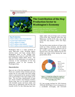The Contribution of the Hop Production Sector to y