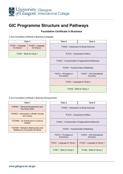 GIC Programme Structure and Pathways