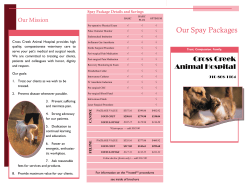 Our Spay Packages - Cross Creek Animal Hospital