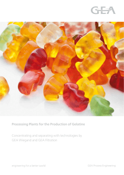 Processing Plants for the Production of Gelatine