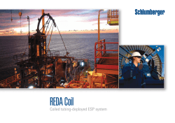 REDA Coil Coiled Tubing-deployed ESP system