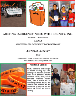 MEND Annual Report 2012