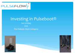 Investing in Pulseboot®
