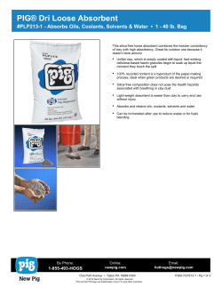 NEW PIG PLP213 1 Dri Loose Absorbent Spec Sheet