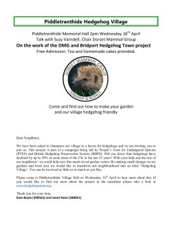 Piddletrenthide Hedgehog Village On the work of the DMG and
