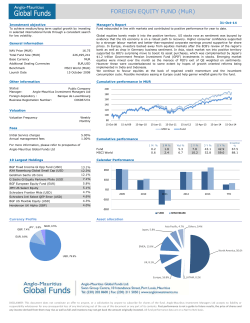 Anglo-Mauritius Global Funds Ltd. Fund Factsheet