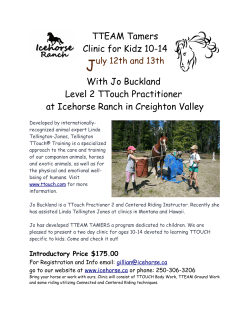 TTEAM Tamers Clinic for Kidz 10-14 With Jo