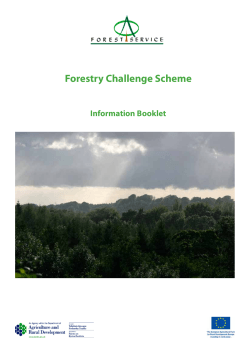 Forestry Challenge Scheme - Department of Agriculture and Rural