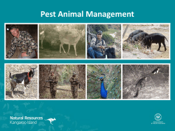 Feral Management Presentation - Natural Resources South Australia