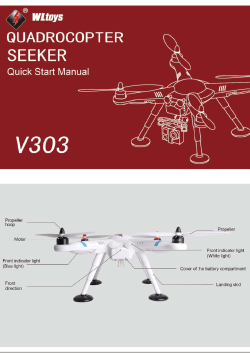 V303 - RC Helicopters