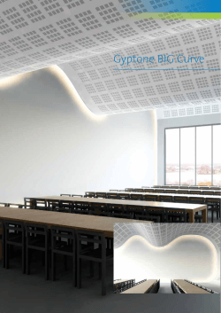 Gyptone BIG Curve