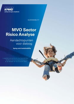 """MVO Sector Risico Analyse"" PDF document 