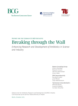 Report for the German GUARD Initiative Breaking through the Wall
