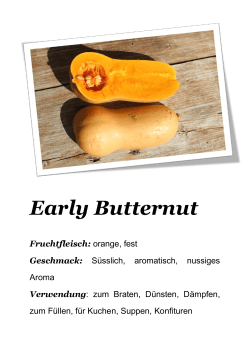 Early Butternut