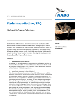 Fledermaus-Hotline / FAQ