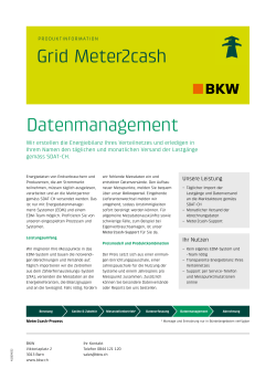 Grid Meter2cash Datenmanagement