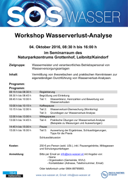 Workshop Wasserverlust-Analyse - SOS