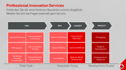 Professional Innovation Services