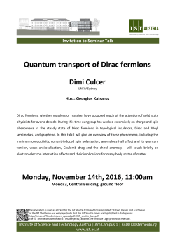 Quantum transport of Dirac fermions