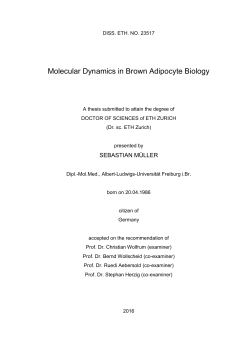 Molecular Dynamics in Brown Adipocyte Biology - ETH E