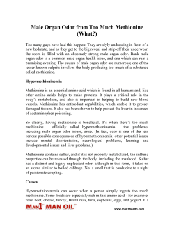 Male Organ Odor from Too Much Methionine (What?)